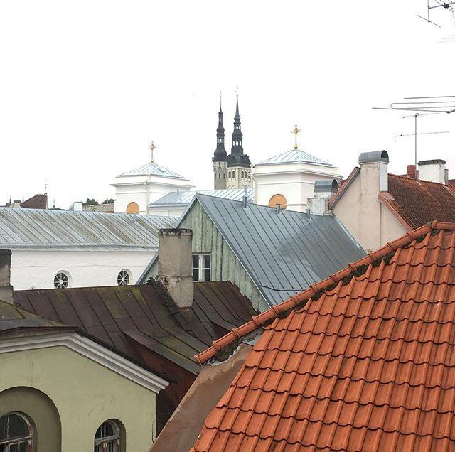 über den Dächern von Talinn #talinn #talinnoldtown #onthewall #travellingactress