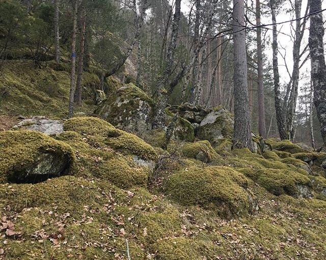 #eidfjord #nofilter #norway #travellingactress