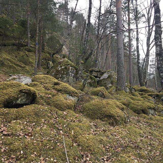 #eidfjord #nofilter #norway